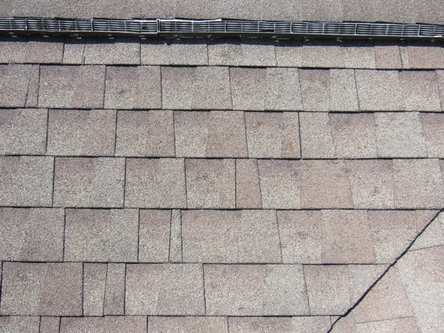 Architectural shingles with hail damage.