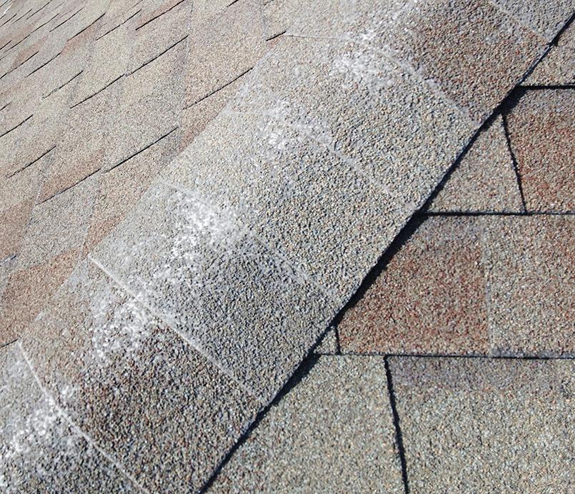 Asphalt ridge cap shingles with missing shingle granules.