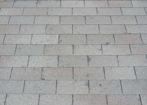 Closeup of a roof damaged by a hail storm